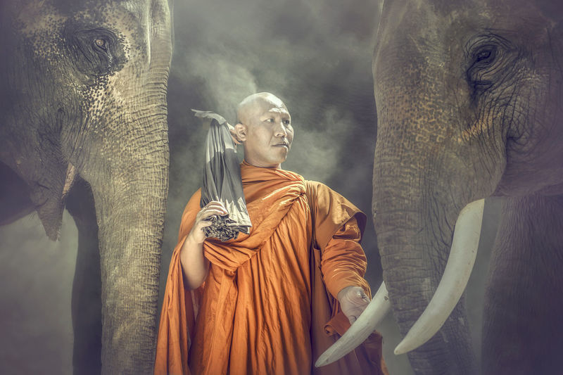 Buddhist monks are standing pat ivory and compassionate Buddha Friends Love Morning Smoke Traveling Animal Themes Animal Trunk Close-up Day Elephant Elephants Friendship Mammal Monk  No People Outdoors Spirituality Statue Travel Destinations Tropical