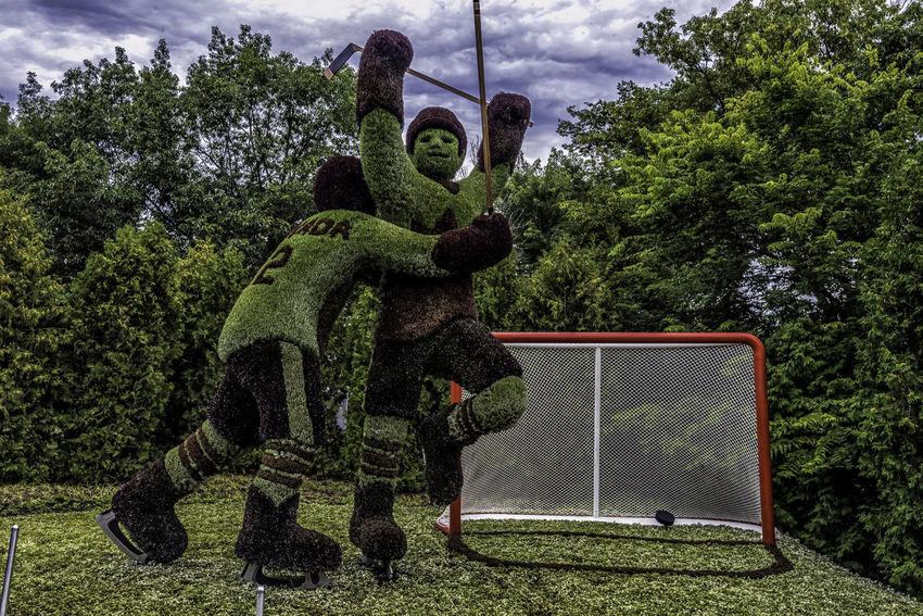 72 Canada150 Gatineau Ontario Ottawa Quebec Canada Flowers Hockey Mosiac