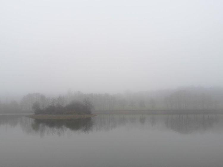 Matin de Noël dans la brume Christmas Morning Sologne France Fog Lake Little Isle Nature Nofilter