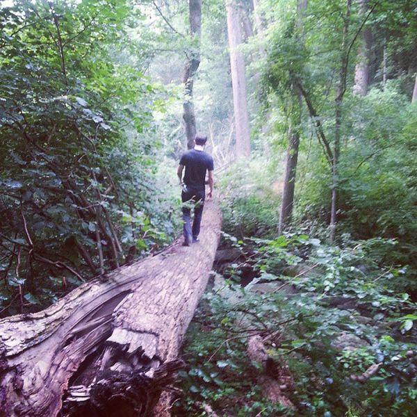 Can never pass up a creek crossing Wissahickon Roxborough Philadelphia