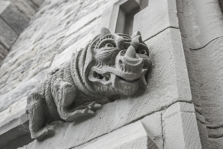 Animal Themes Chinese Dragon Close-up Day Gargoyle Low Angle View No People Outdoors Sculpture Statue