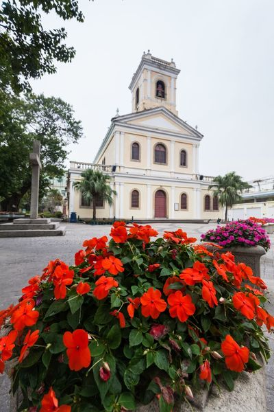 Holiday in Macau - Old Taipa Village Macao Architecture ASIA Beauty In Nature Building Exterior Built Structure Day Flower Flower Head Flowerbed Fragility Growth Holiday Macao  Macao China Macau Macau, China Nature No People Old Outdoors Plant Red Taipa  Vacation Village
