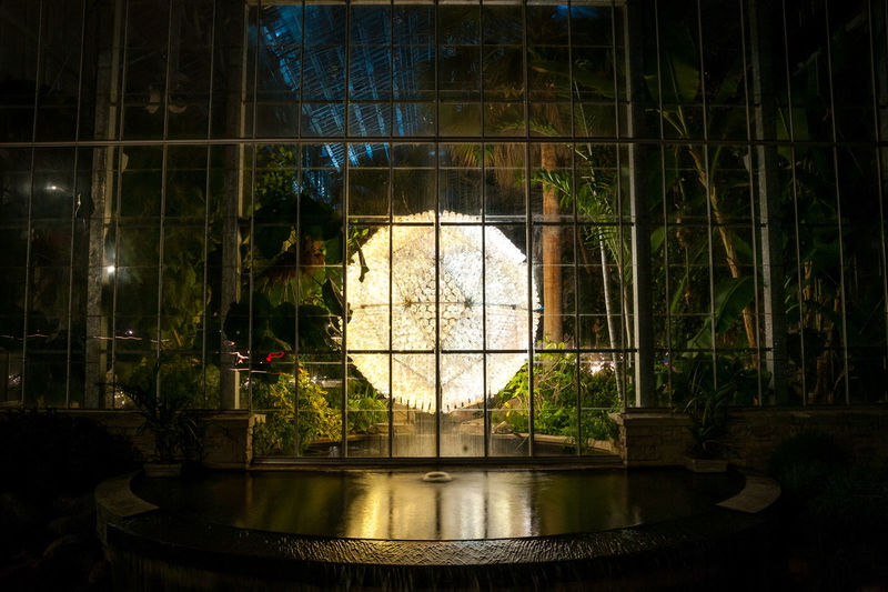 Bruce Munro: LIGHT at Nicholas Conservatory Plants Trees Night Water Architecture Building Exterior Brucemunro Outdoors No People Museum Nicholasconservatory Illuminated Sphere