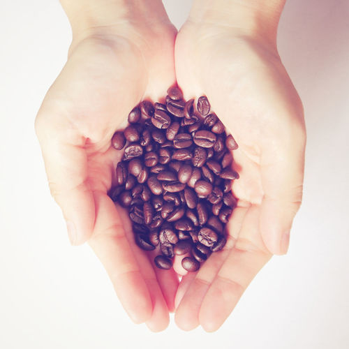 Human Hand Hand Human Body Part Food And Drink Studio Shot One Person Holding White Background Food Coffee Indoors  Coffee - Drink Freshness Body Part Close-up Large Group Of Objects Roasted Coffee Bean Hands Cupped High Angle View Real People Finger Coffee Beans