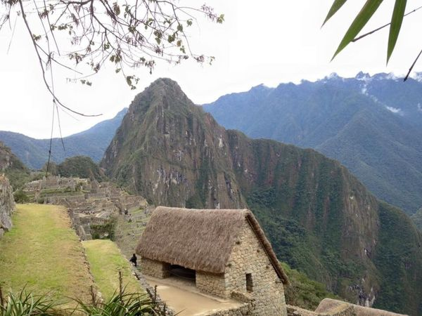 Ancient Mountain Mountain Range Nature Ancient City Beauty In Nature Ancient Architecture Tranquility Tranquil Scene Tree Outdoors Built Structure Scenics Growth No People Architecture Building Exterior Day Sky Landscape Machu Picchu