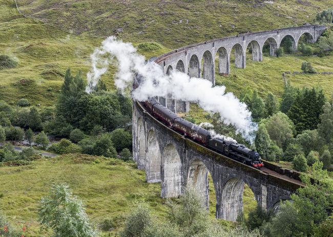 Train that inspired the Harry Potter Arch Arch Bridge Architectural Column Bridge Bridge - Man Made Structure Engineering Europe Harry Potter Harry Potter Tour High Angle View History Hogwarts Express Motion Nature Scotland Smoke Steam Locomotive Steam Train Tourism Train Travel Viaduct