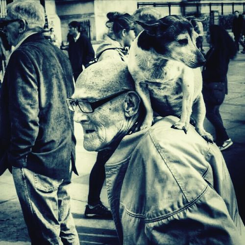 two true friends encountered in Trafalgar square London, a man and his dog. Taking Photos Check This Out Enjoying Life