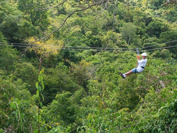 Man zip lining in forest