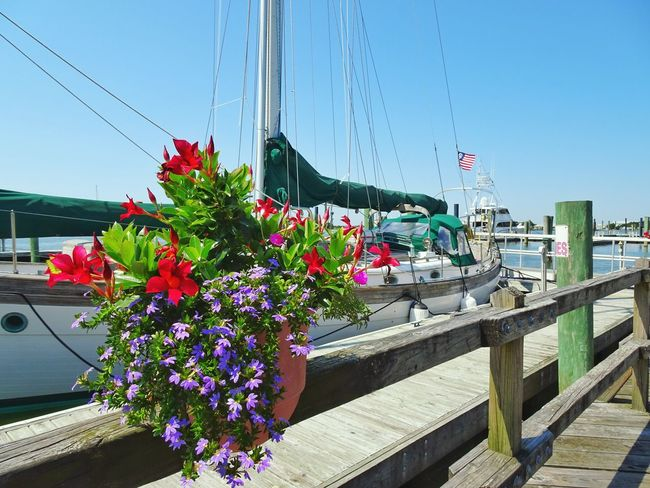 Beaufort  North Carolina Day Scenics Outdoors Water Waterfront Ship Boat Flowers Coastal Town