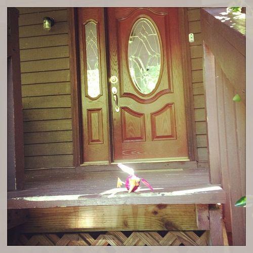 Saying goodbye to our home away from home! Gatlinburg Smokeymountains Colonialcabins Poppypbird