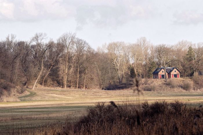 Little House On The Prairie Wilde Dof Tree Sky Grass No People Nature Field Bare Tree Day Landscape Outdoors Tranquility Beauty In Nature