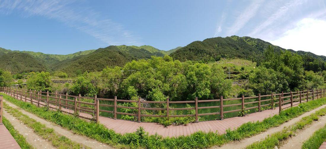 지리산 Hiking Panorama Tree Rural Scene Agriculture Sky Cloud - Sky Plantation Growing