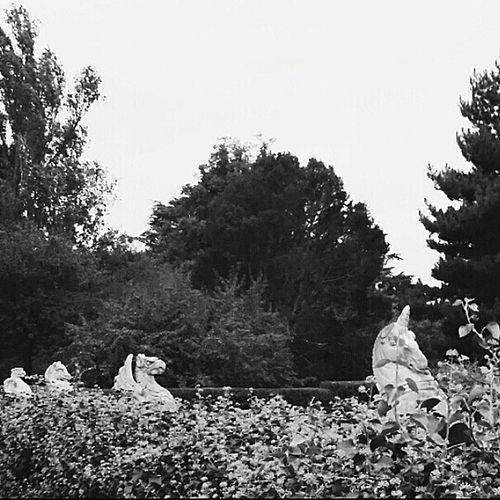 Replicas of the Queen's Beasts 10 Heraldic Statues 1.83m Tall Depicting Genealogy Of Queen Elizabeth II Used In Her Coronation In 1953