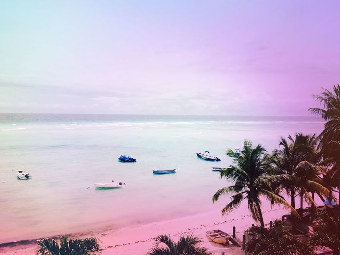 Taking Photos Hello World Sunrise Life Is A Beach Nature Traveling Sun And Shadow Holiday Clouds And Sky Barbados Travel Water Colours Pink Boat Paradise
