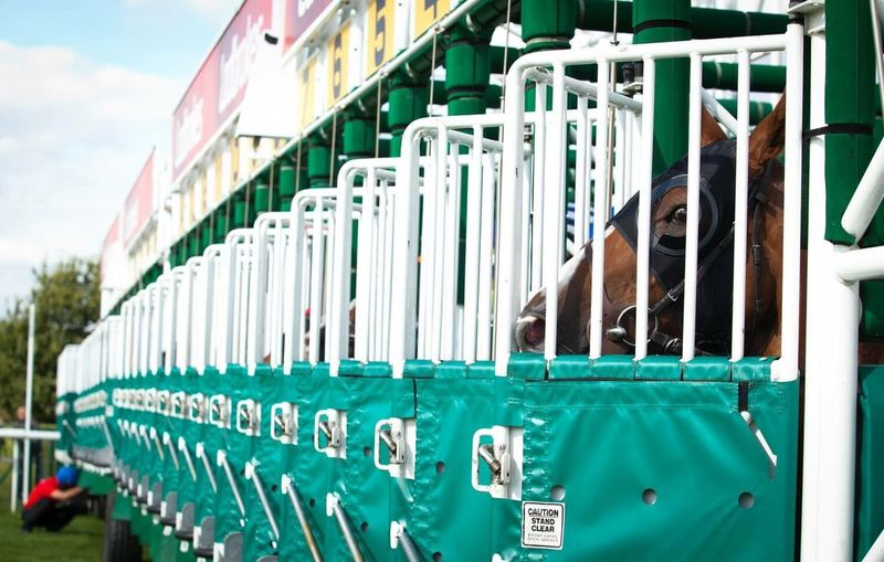 Close-Up Side View Of Starting Stalls At Racecourse