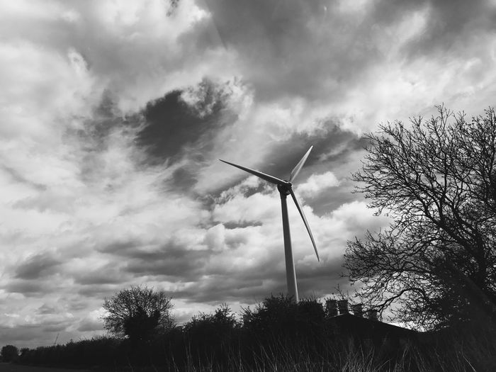Environmental Conservation Wind Power Alternative Energy Wind Turbine Sky Tree Renewable Energy Cloud - Sky Fuel And Power Generation Low Angle View Windmill Nature Industrial Windmill Day Outdoors Silhouette Field No People Growth Scenics