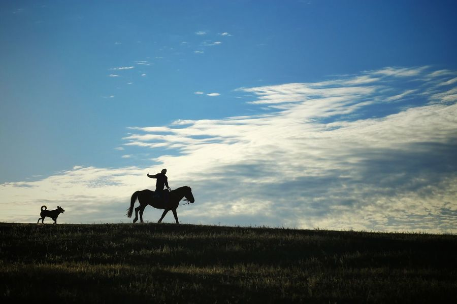 Abstract Horses Nature Photography Quiet Moments On The Road Travel The Great Outdoors - 2016 EyeEm Awards Landscape Morning Light Enjoying The View Landscapes Horse Riding Morning Sunny Day Blue Sky Silhouettes Silouette & Sky Horse And Rider Dog And Horses Cloudy Sky