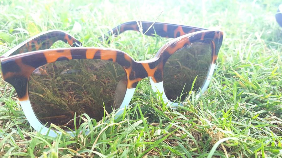 Sunglasses Grass Nature No People Field Outdoors Plant Day Growth Close-up