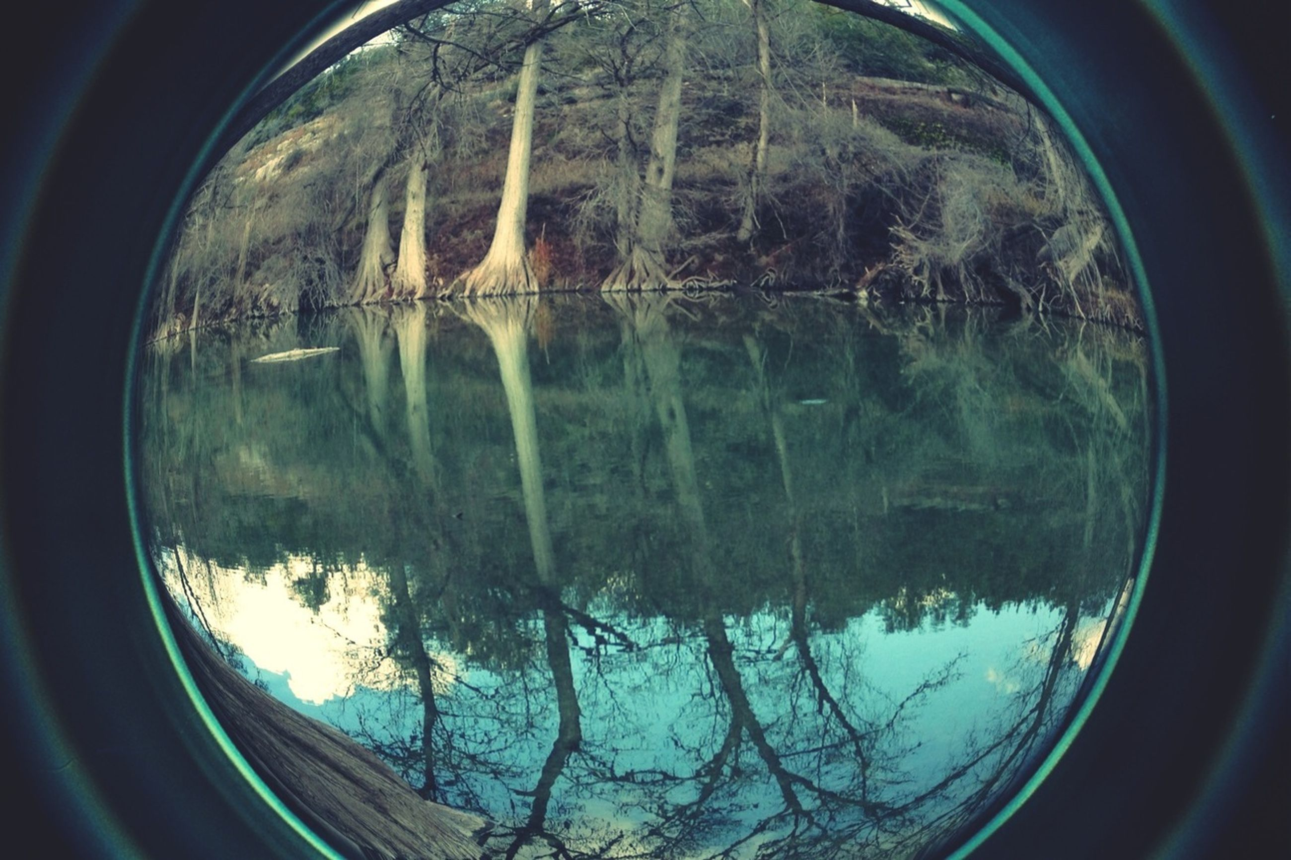 reflection, water, transparent, glass - material, window, tree, transportation, mode of transport, indoors, lake, sky, vehicle interior, fish-eye lens, nature, standing water, circle, day, part of, glass, no people