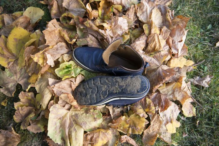 Autumn Boots Foot Wear  Winter Blue Brown Day Leaf Leather Shoes Men`s Wear Menswear Old Outdoors Shoes Used Usedom Warm