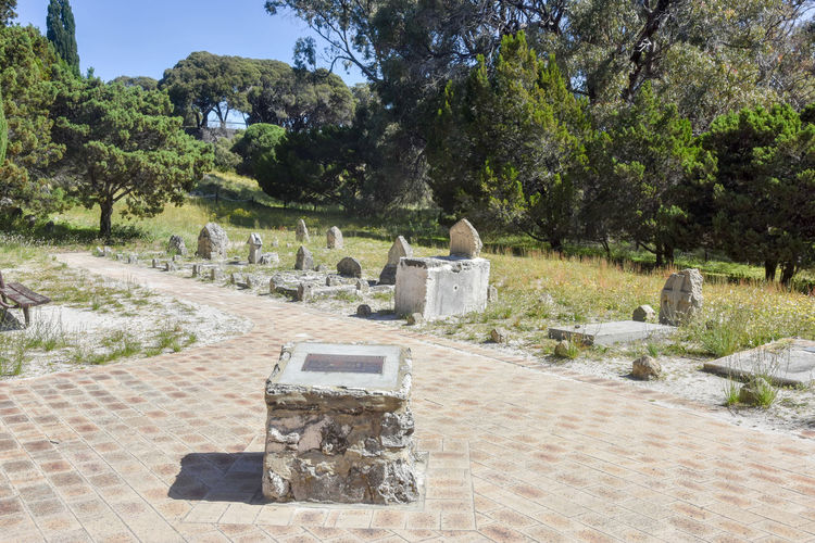 Old cemetery in the natural reserve with brick sidewalk at Rottnest Island in Western Australia. Australia Brick Burial Ground Cemetery Footpath Grave Gravestones Graveyard Greenery Headstone Island Markers  Memorial Plaque Rememberance Reserve Rest In Peace Resting Place Rottnest Rottnest Island Cemetery Stone Tourist Attraction  Travel Destinations Trees Western Australia