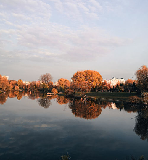 Mirror reflection of golden autumn trees in a pond in a city park