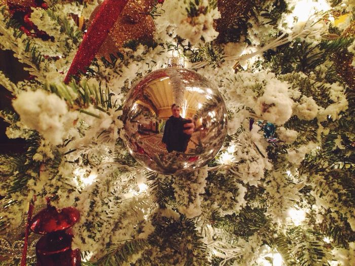 Christmas Decorations Christmas Tree That's Me Holidays self portrait