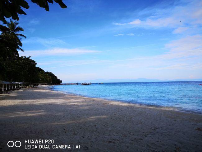 Tree Water Sea Beach Swimming Sand Summer Blue Sky Horizon Over Water