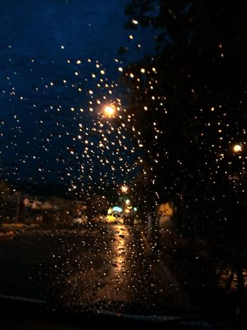 Rain Water Reflections