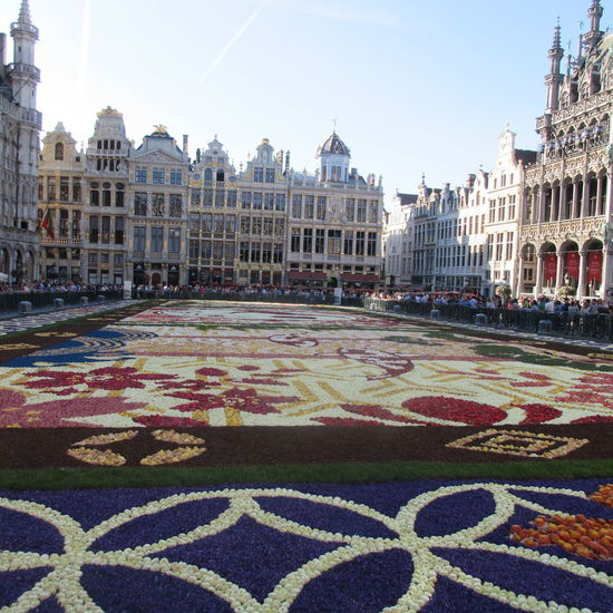 Grandplacebrussels Brusselsbelgium Flowerscarpet