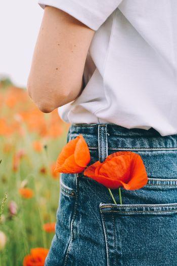 Close-up of man holding orange flower
