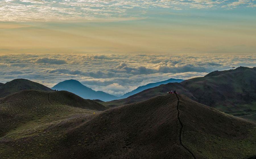 Highway to heaven Mt. Pulag Trekking Eyemphilippines