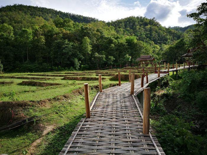 My new trip in Pai. ตะลุยเดี่ยวแบกเป้เที่ยว
