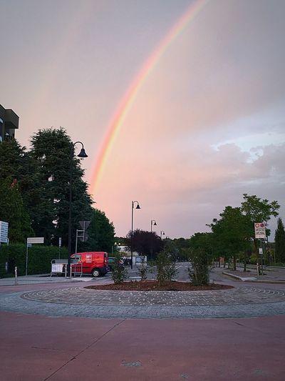 Rainbow Tree Sky Cloud - Sky Plant City Building Exterior