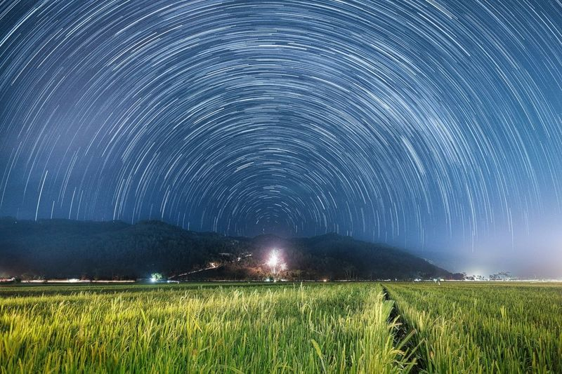 Star trails above Pacitan Star Trails Pacitan Landscape Environment Scenics - Nature Sky Plant Star - Space Night Astronomy Beauty In Nature Nature Land Field Space Rural Scene No People Blue Space And Astronomy Constellation Agriculture Tranquility The Traveler - 2018 EyeEm Awards