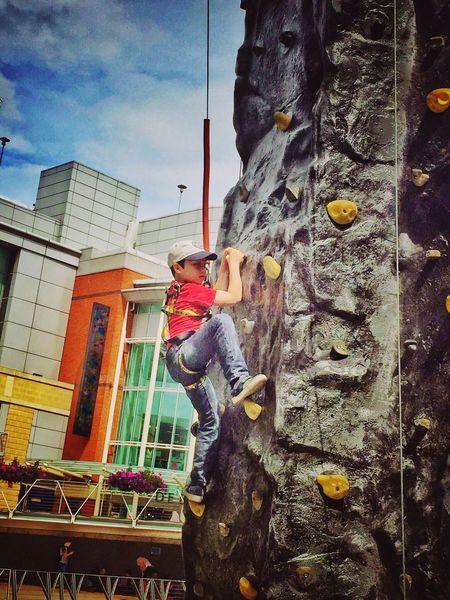 Child Boy Climbing Climbing Wall Outside Outdoors Adventure Leisure Activity Built Structure Childhood Adrenaline Climb Rope Helmet Safety Harness High Hight Exercise Cap Artificial Rock Climbing Tiring Frightening