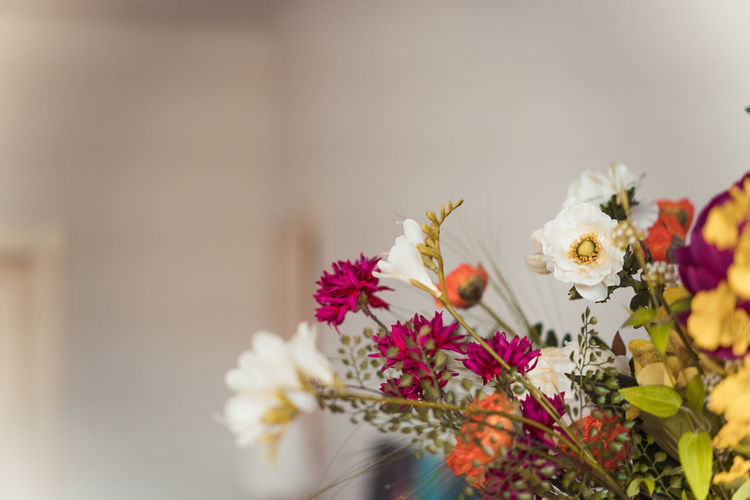 Christmas Decoration Christmas Decoration Christmas Festive Decoration Flowering Plant Flower Freshness Plant Fragility Vulnerability  Beauty In Nature Close-up Selective Focus Petal Flower Head Nature No People Inflorescence Focus On Foreground Day Growth Indoors  White Color Flower Arrangement Bunch Of Flowers Bouquet