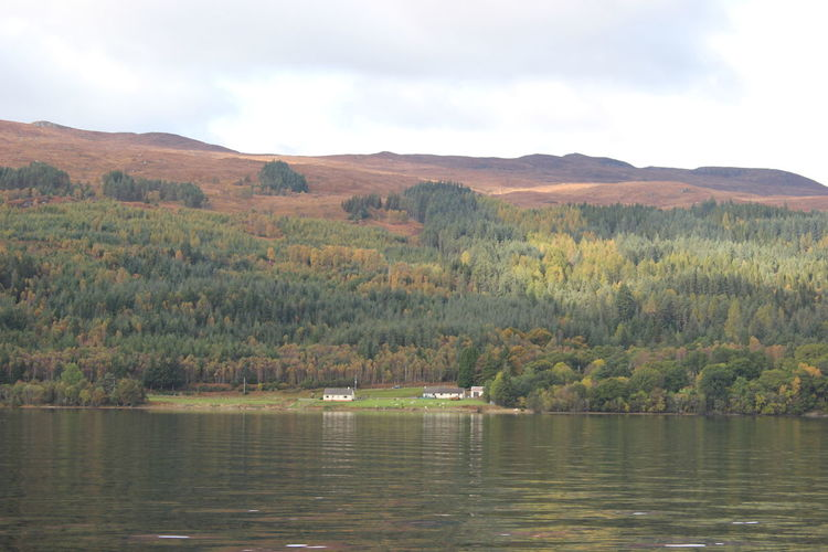 Day Forest Highlands Lake Lake View Landscape Loch Ness Mountain Outdoors Scotland