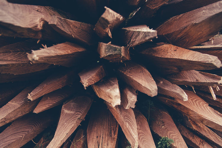 In A Row Abundance Backgrounds Close-up Day Deforestation Forestry Industry Fuel And Power Generation Full Frame Heap Large Group Of Objects Log Lumber Industry Nature No People Outdoors Picket Pile Stake Textured  Timber Wood - Material Woodpile