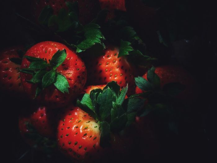 Eyeem Philippines EyeEm Best Shots EyeEm Selects EyeEm Gallery Still Life Photography StillLifePhotography Fruit Black Background Red Close-up Leaf Vein Strawberry Berry Fruit Berry Plant Life
