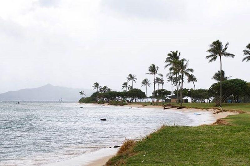 FBF  | On the mind. | thegoldenbullet.org 😚 Alohafriday Mentalbreak Thegoldenbulletmag Linkinbio Snapshots Oahuinnovember Kaneohe Kualoa Kualoabeachpark Oahu Hawaiinei Hivibes Flickrfiles Outdoorphotography Canon7d
