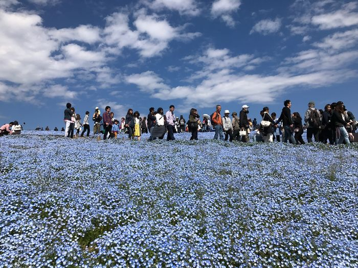 HitachiSeaSidePark Japan Large Group Of People Sky Nature Real People Men Cloud - Sky Day Leisure Activity Outdoors Enjoyment Crowd Water Women Vacations Beauty In Nature Lifestyles Adult People