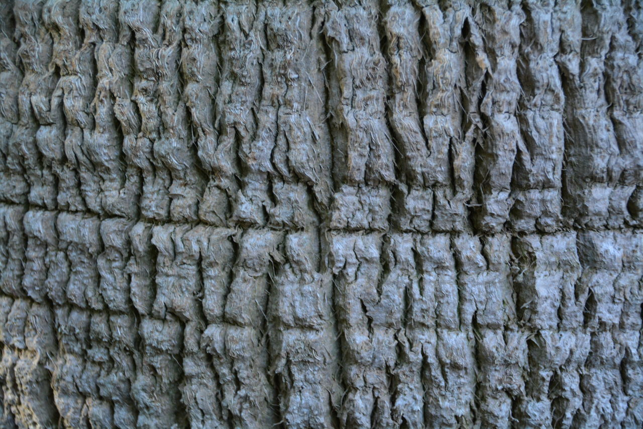 textured, backgrounds, full frame, rough, pattern, no people, close-up, outdoors, nature, day
