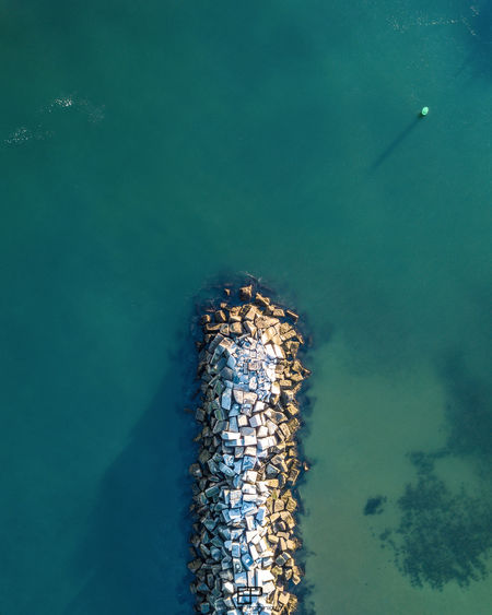 High angle view of insect in sea
