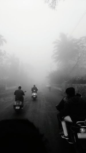Rear view of silhouette people riding motorcycle in foggy weather