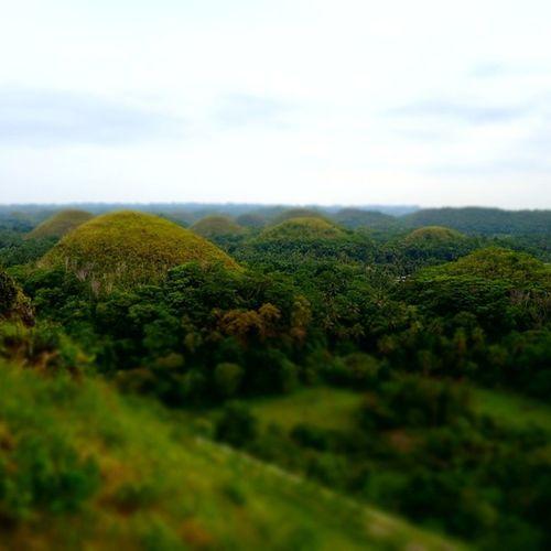 Bohol Landscape Chocolatehills Philippines