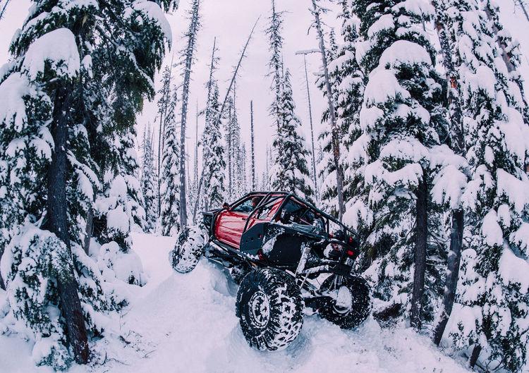 Hiking Shades Of Winter Travel Winter Wintertime Adventure Hikingadventures Off Road Offroad Winter Wonderland