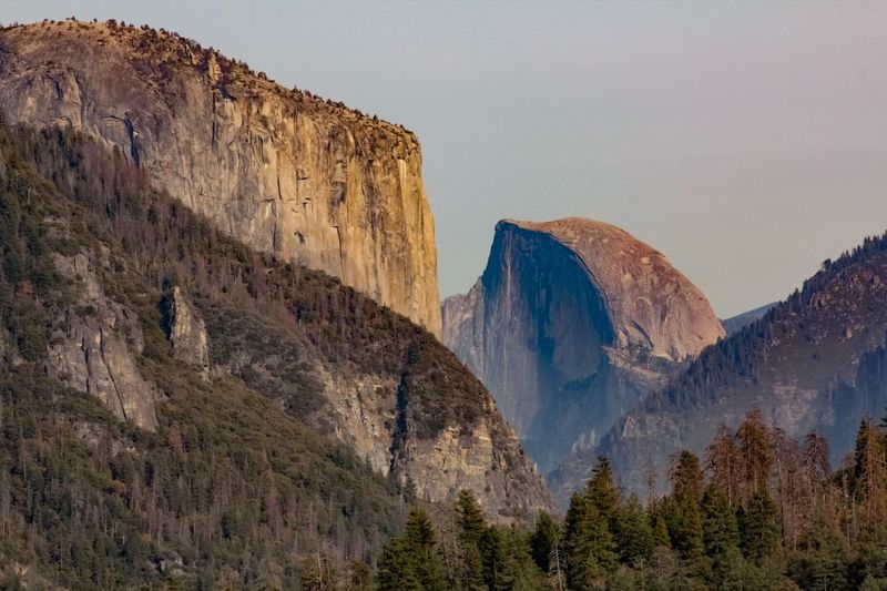 El Capitain & Half Dome, from Tunnel View Mountain Rock Plant Scenics - Nature Environment Rock - Object Land Travel Destinations Nature