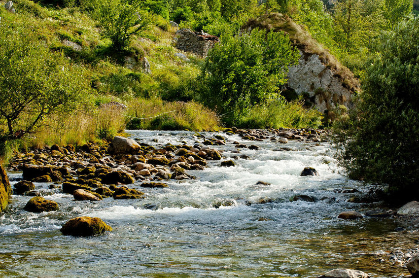 Beauty In Nature Change Day Green Green Color Landscape Leading Lush Foliage Narrow Nature Non-urban Scene Outdoors Power In Nature Rock Rough Scenics Stone Stream Tranquil Scene Tranquility Picos De Europa Rutadelcares