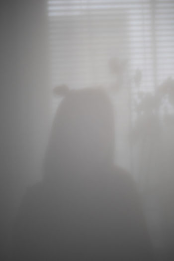 Rear view of silhouette woman standing against window